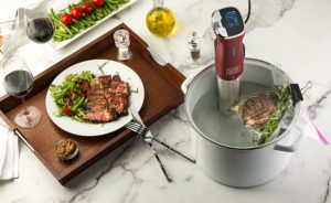 Kitchen Gizmo Sous Vide with steak